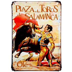 163 Toros Salamanca